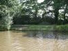 alberts-swim-7-pic-2