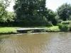 alberts-swim-8-pic-1
